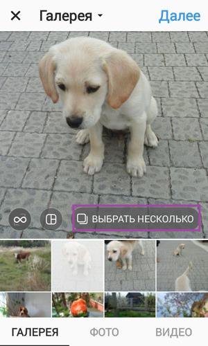 Как добавить несколько фото в Инстаграм, а также коллажем или свайпом